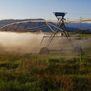 Center pivot irrigation in California, USA